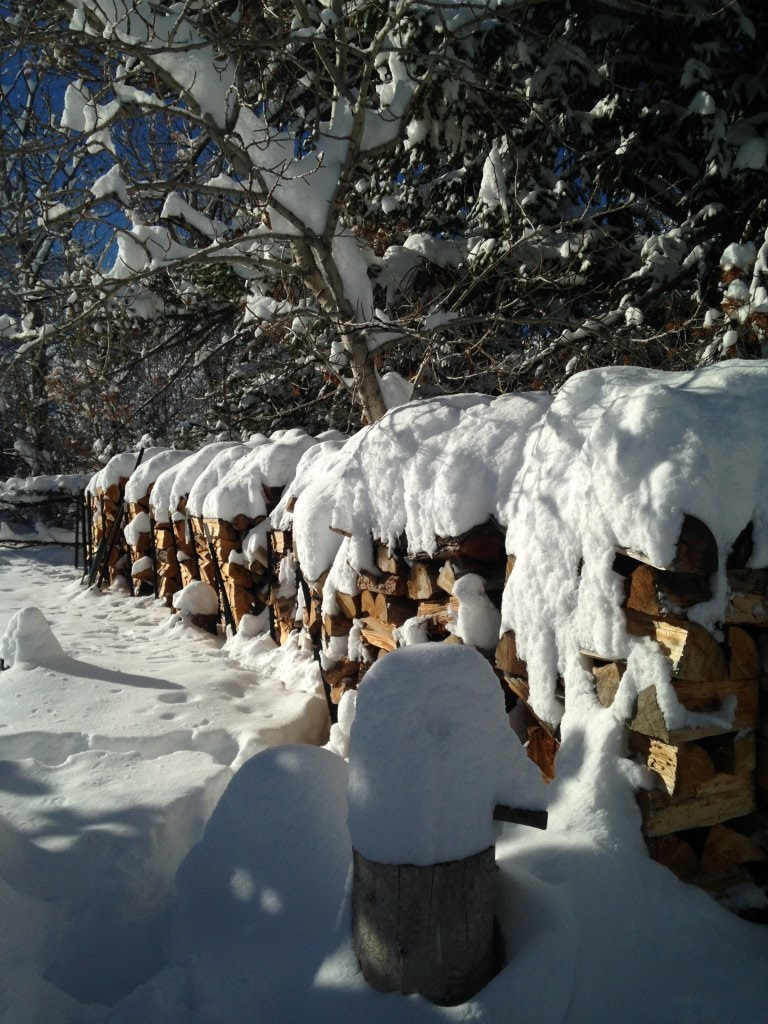 snow.woodpile